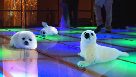 Source: http://thegrammarnazi.tumblr.com/post/2504254185/stop-clubbing-baby-seals-stop-clubbing-baby